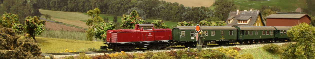 BSW Modellbahngruppe Lindau (B)